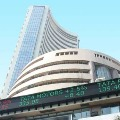 Sensex ends this week  with profits