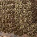 Chhattishgarh govt to buy cow dung