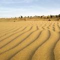 Scientists found ancient river in Thar desert