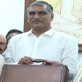 Telangana budget Rs 182914 crores