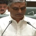 Telangana got two digit growth amid financial crisis says Harish Rao