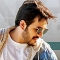 No New Movie Update on Akhil Birthday