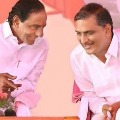 harish with kcr images