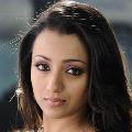 Trisha to roamce with Raviteja again