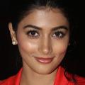 Pooja Hegde in heroine oriented flick