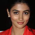Pooja Hegde in Tamil flick after years