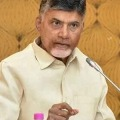Hired volunteers with public money are for bow down YCP leaders only Questions Chandrababu