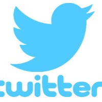 Twitter appointed interim compliance officer