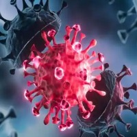 Moscow Strain Of Coronavirus Found In Russia