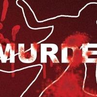 Brothers in Kurnool dist killed