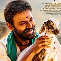Narappa movie update