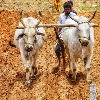 Rythu Bandhu continues in Telangana