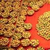 Sugar free mangoes in Pakistan