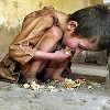 11 Hunger Deaths For Every Minute In the World
