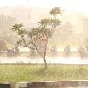 Heavy Rains expected in telangana today and tomorrow