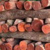 Madanapalle police seize over Rs 6 crore worth Red sandalwood in tamilnadu