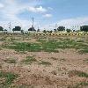 Telangana govt auctioned lands at Hyderabad suburban