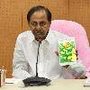 CM KCR reviews rains in Telangana
