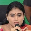 Be shameful KCR says Sharmila