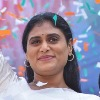 YS Sharmila requests media not to fall in KCR trap