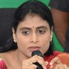 YS Sharmila gone to Idupulapaya