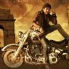 Pavan and Harish combo movie update
