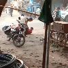 girl family members brutally beaten her lover
