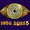 Ram Charan first time appears on Bigg Boss show