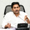 CM Jagan reviews on Amul Palavelluva