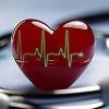 Apollo Hospitals launch AI tool to predict cardiovascular disease risk
