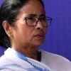mamata leads in bhabanipur