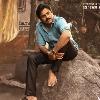 Bheemla Nayak movie update