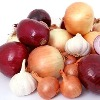 Mexican onions causes Salmonella decease in Americans
