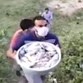 Viral Video of biharies Giving food to Mizoram Migrents Train
