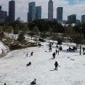 Snowfall fears Texas People