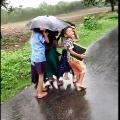 Video of kids in an umbrella viral on Social Media
