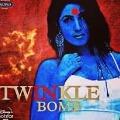 twinkle khanna fires on netizen