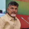 Chandrababu phone call to TDP Sarpanch Candidate