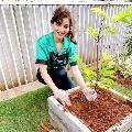 Bollywood actress Urvashi Rautela accepts Green India Challenge initiative