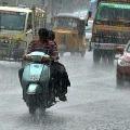 Rain Warning in Next 3 Days