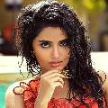 Anupama chosen for a Malayalam remake