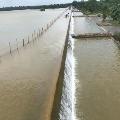 ground water levels in Hyderabad raised
