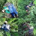 BSF kills 5 intruders along India Pak IB in Punjab