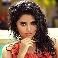 Anupama Parameshvaran out of Kartikeya sequel