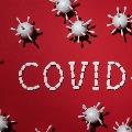 New Virus Cultures in NIV