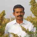 Anantapur farmer got international best farmer award