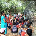 Centre tells no decision on schools opening