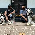 Manchu Manoj and Sai Dharam Tej arranged a date for their pets