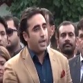PPP wins in Umerkot by polls