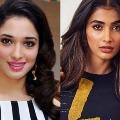 Tamannaah and Pooja Hegde are classmates